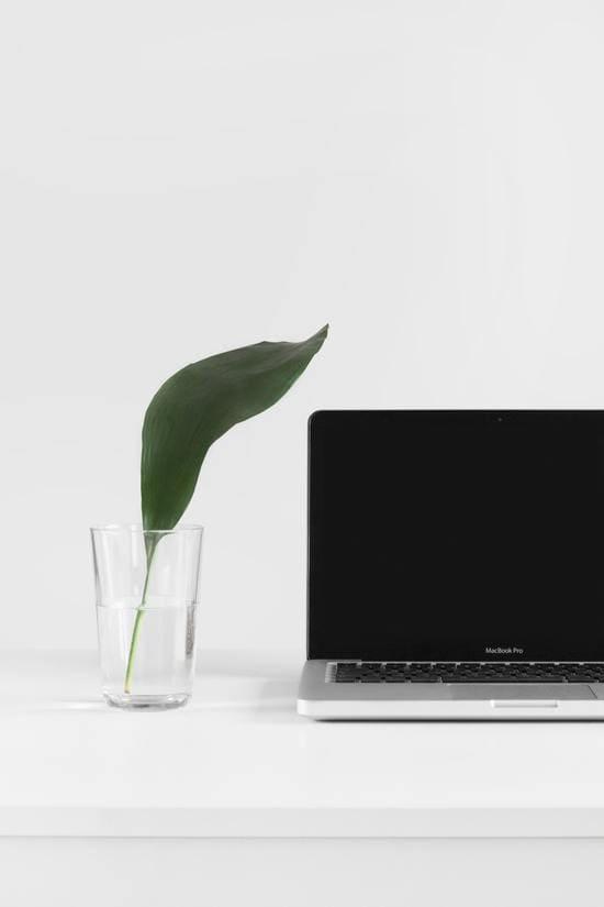 recursos estilográficas en la web
