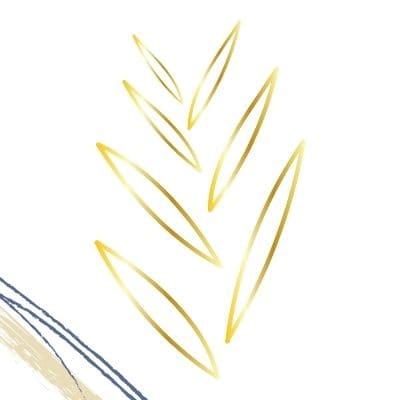 ¿Por qué elegir un plumín de oro?