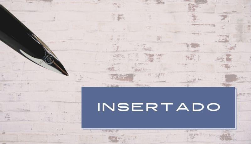 clases de plumín insertado inset