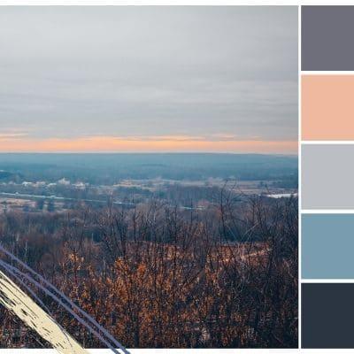 Deja que el color hable por ti